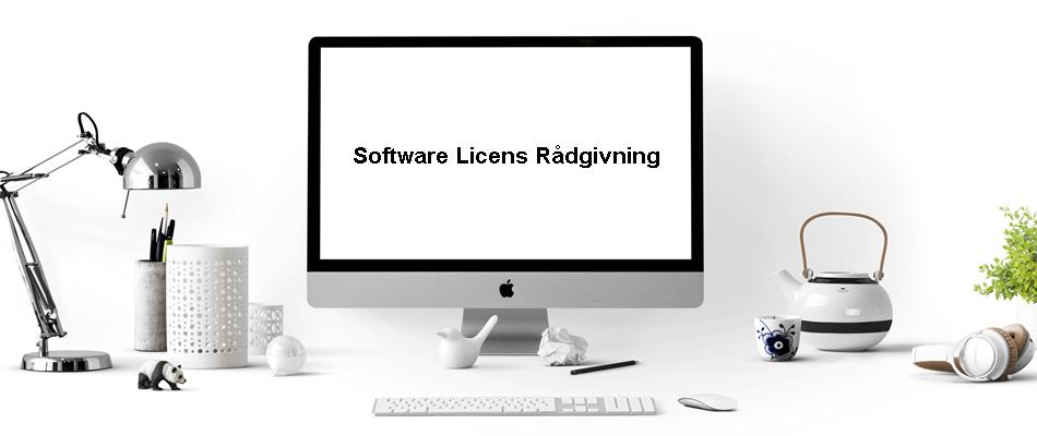 Rådgivning om software licenser
